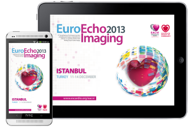 euroecho2013_screenshot