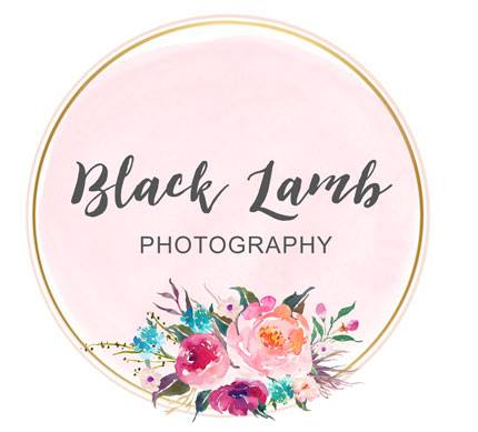 Black-Lamb-Photography